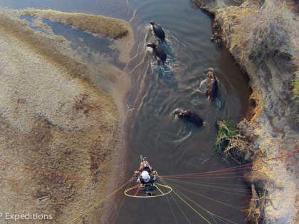 Zambia: Ultimate African River Expedition